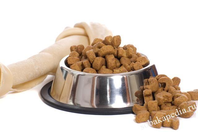 Диетические корма для собак