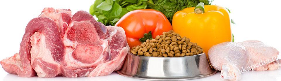 Как не допустить ошибки при переходе на натуральное питание