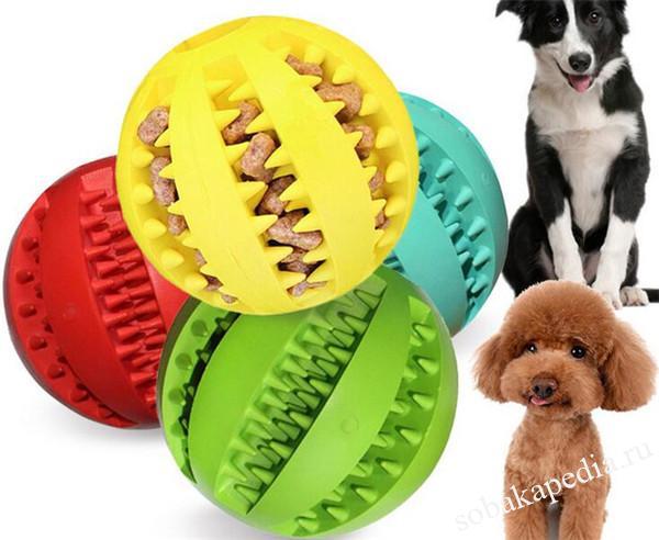 Игрушки для собак. Как выбирать игрушку? Какими бывают игрушки?